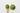 Holzloeffel mit gruenem Matchapulver auf hellgrauem Hintergrund