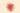 Nahaufnahme einer pfirsichbluete mit durchscheinendem warmen  licht