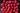 Nahaufnahme von zahlreichen roten Himbeeren auf dunklem Tisch