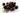 Frische Acai-Beeren vor weißem Hintergrund