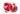 Gezeichneter ganzer und halbierter Granatapfel mit einzelnen Kernen auf weißem Hintergrund