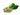 Gruene Kaffebohnen und gruene Blaetter auf weißem Hintergrund