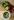 Weiße runde Porzeallanschale mit geschnittenen Rharbaberstueckchen und geschaeltem Rhabarber auf Holztisch