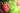 Apple Mania Bodylotion (MHD 01.02.2022)