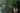 hellbraunes einkaufsnetz mit frischem gemuese an haken vor dunkler holzwand