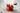 Zwei ganze und zwei halbe Erdbeeren mit gruenen Blaettern liegen auf einem hellgrauen auf Holztisch