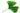 Einzelnes gruenes Ginkgoblatt mit Wassertropfen auf weißem Hintergrund